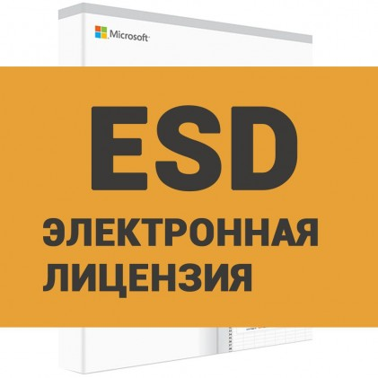 Microsoft Office 2019 Home+Business (ESD)