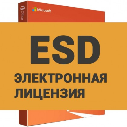 Microsoft Office 2019 Home&Student (ESD)