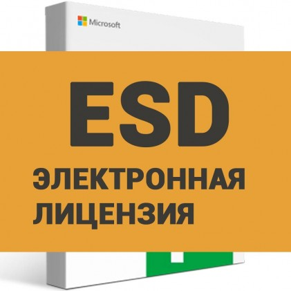 Microsoft Project Professional 2019 (ESD)